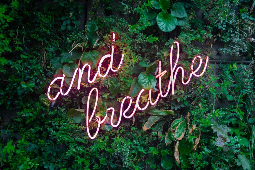 -and breathe- steht in Leuchtbuchstaben an einer begrünten Wand